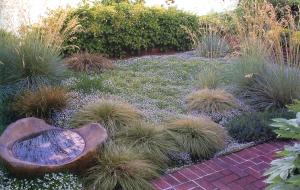 Ornamental Grass Maintenance Lifestyle Landscapes Inc