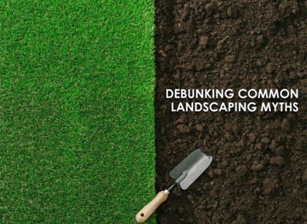 Landscaping Myths