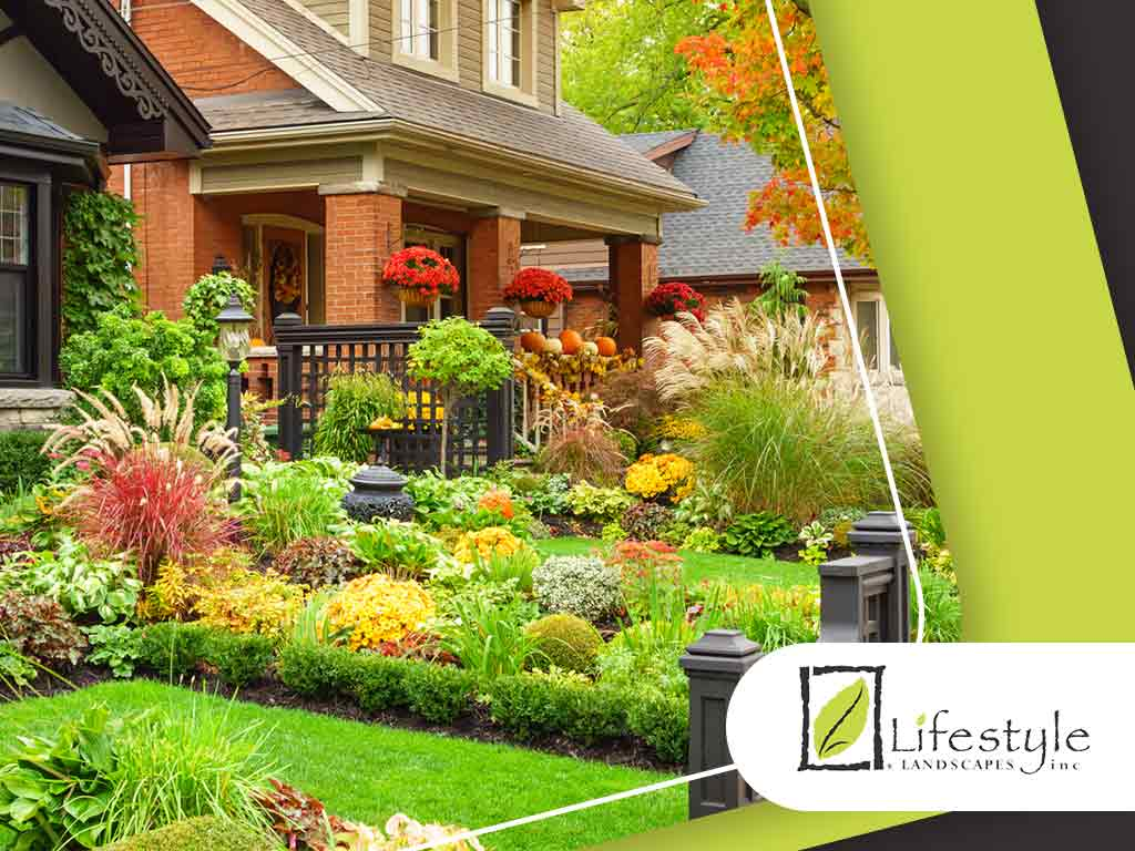Plants And Flowering Shrubs That Thrive All Year Round